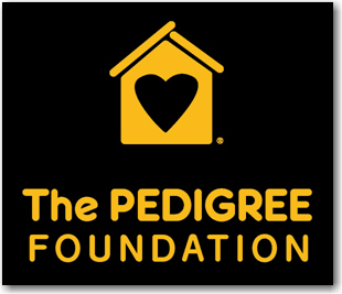 The Pedigree Foundation Black