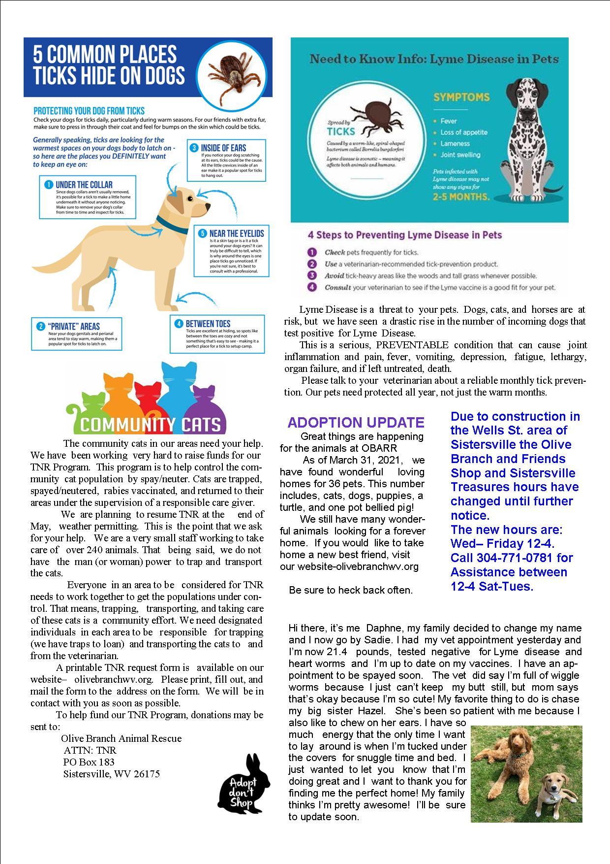 Newsletter April June 2021 page 2