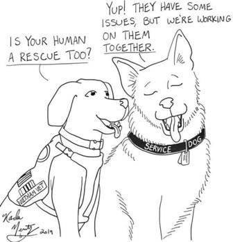 cat & Dog talking 1