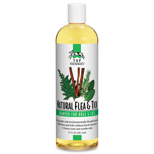 Flea & Tic Shampoo