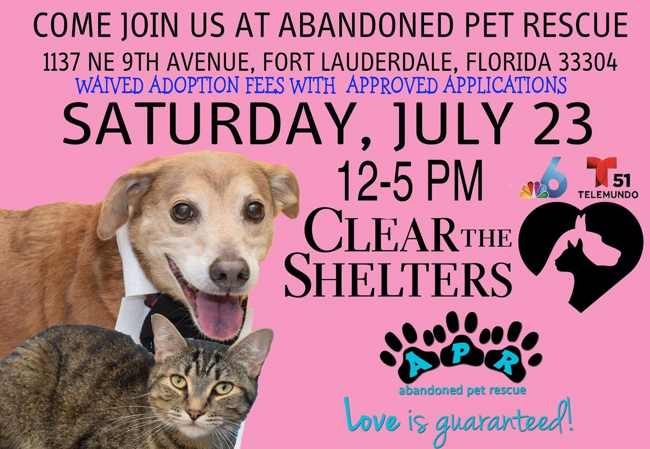 2016 clear shelters