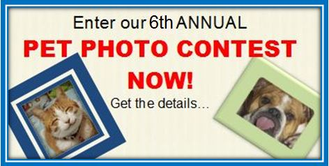 2014 Pet Photo Contest Front Page