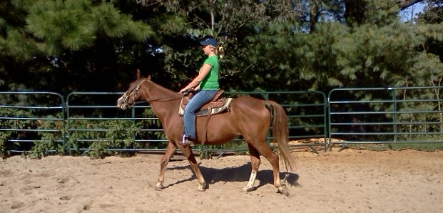 Mac Under Saddle