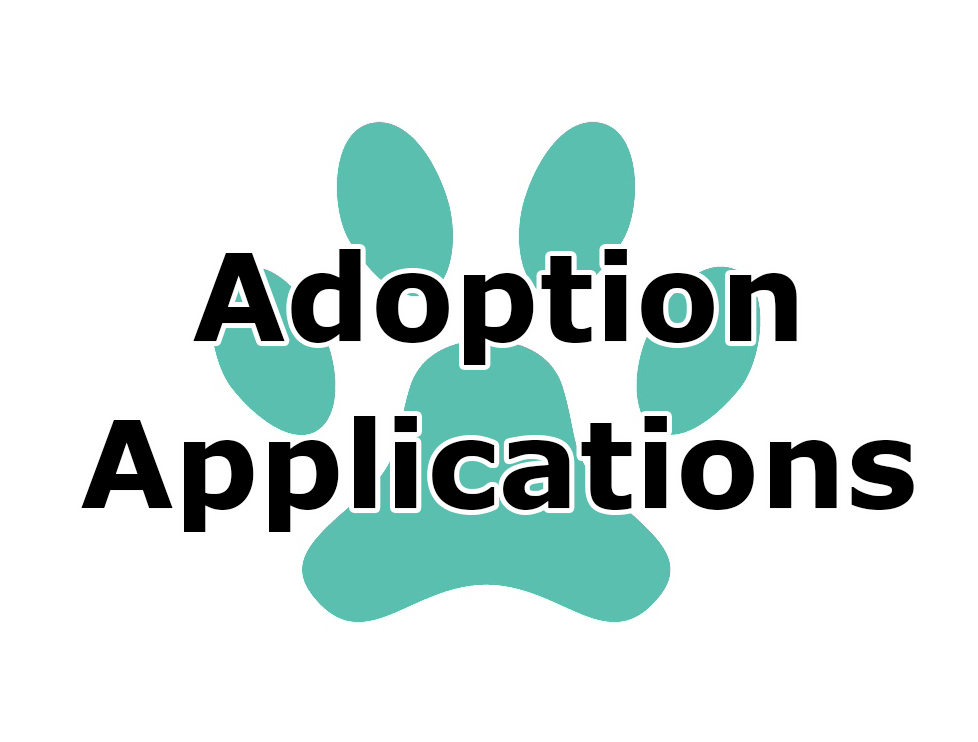 Icon - Adoption Application