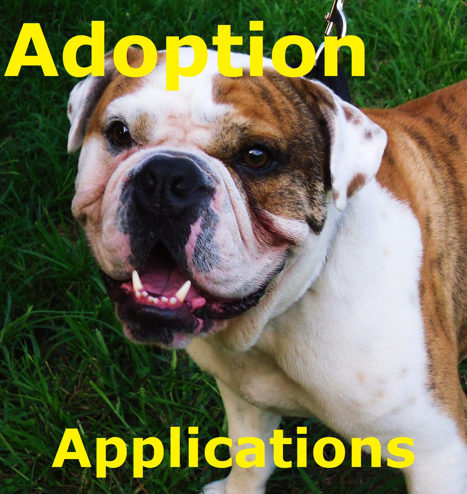 Adoption Application Poster2