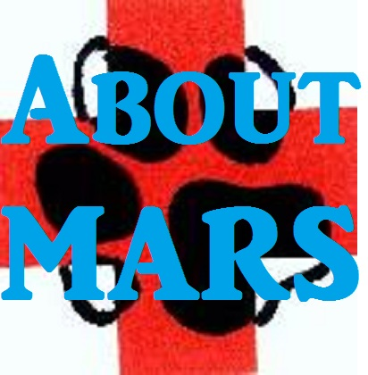 Poster- About MARS