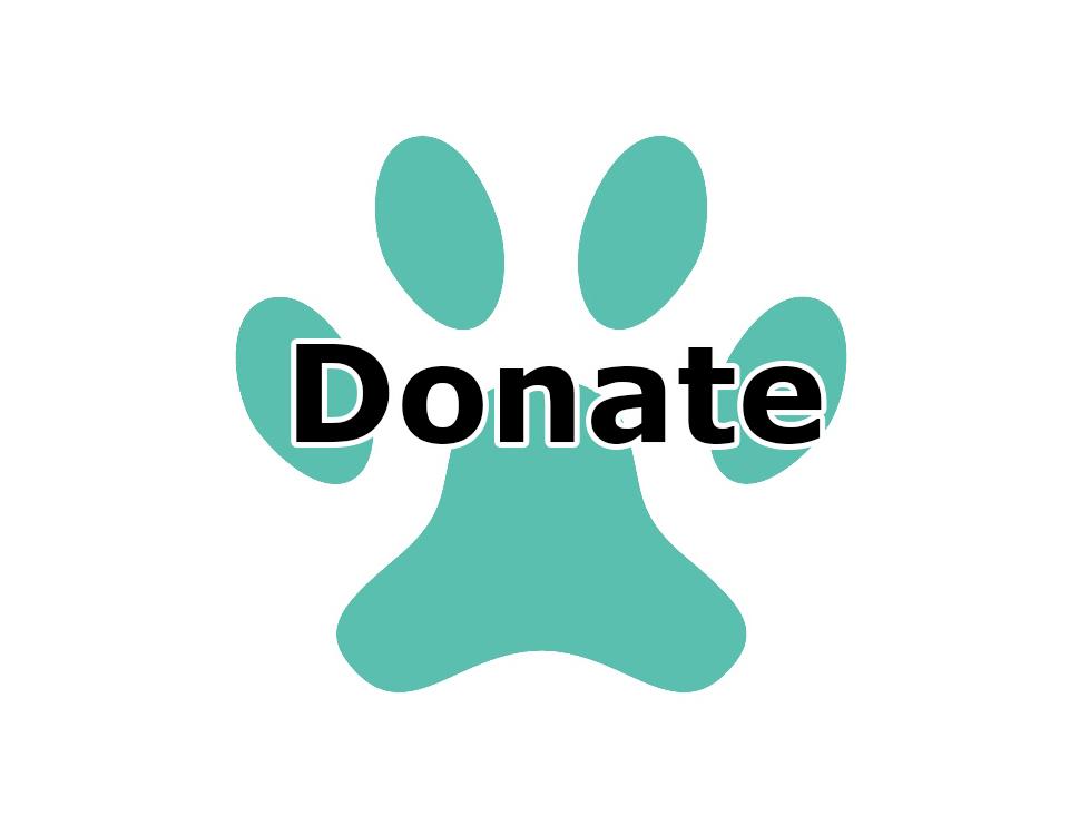 Icon - Donate1