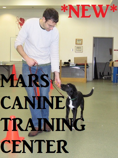 Canine Training Center1