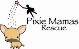 pixie log 4