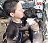 diesel puppy