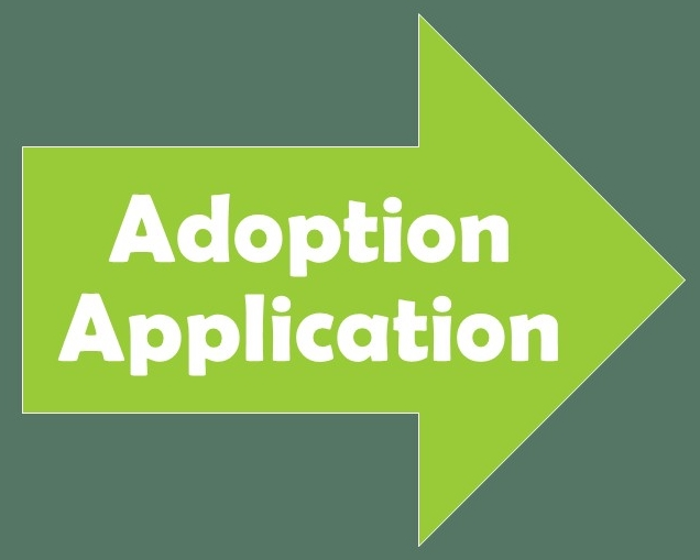 Adoption App Graphic 2
