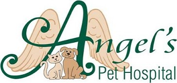 Partner-Angels