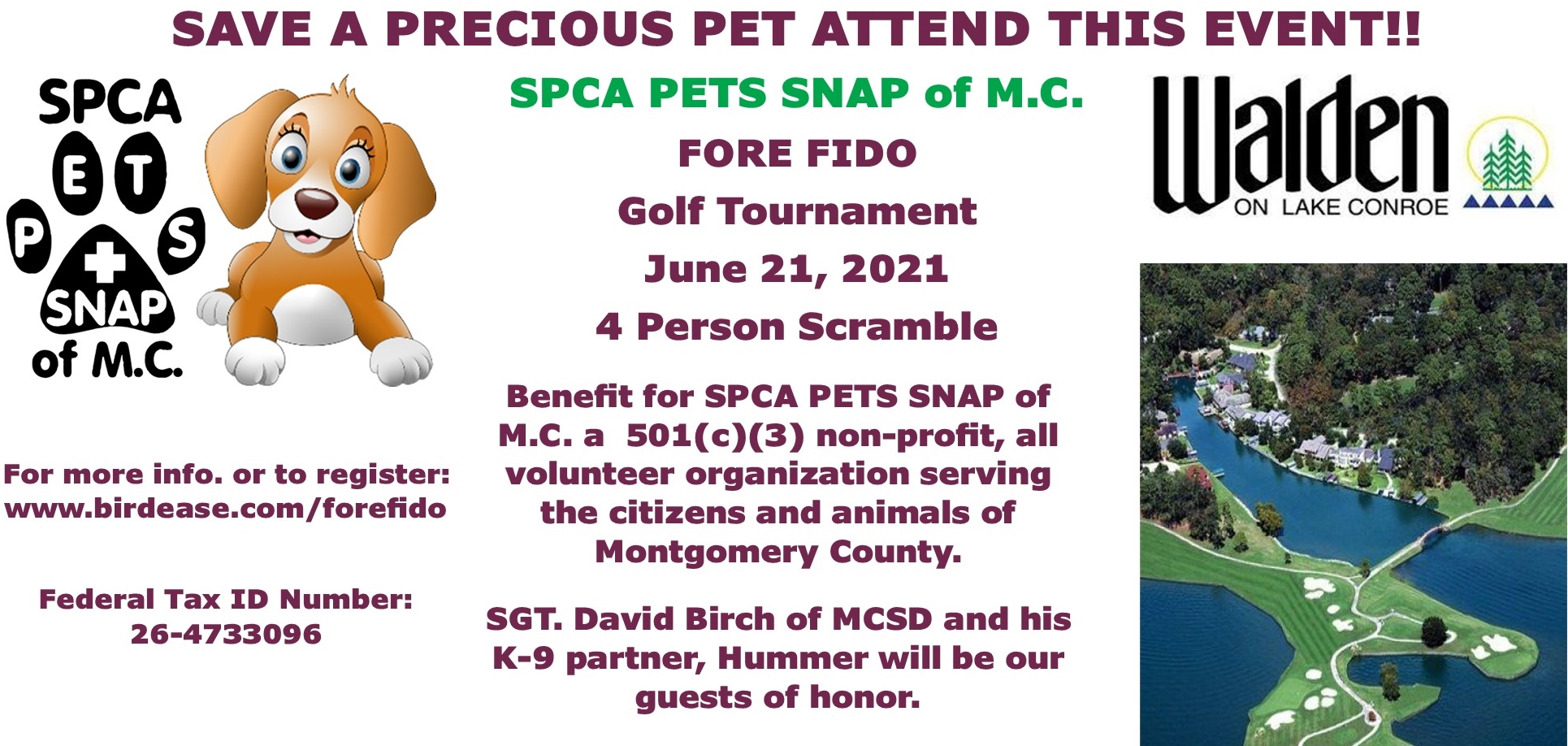 For Fido Web Page2