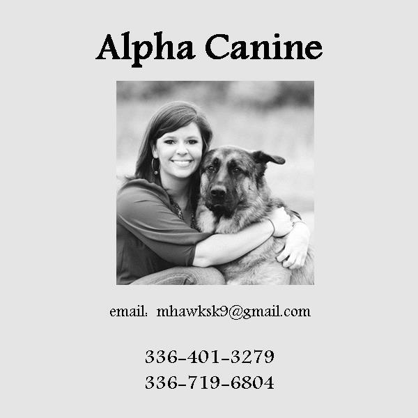 Alpha Canine