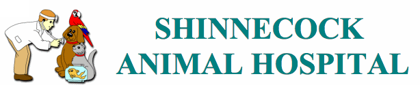 Shinnecock Animal Hospital