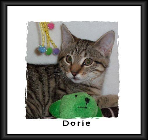 Dorie framed