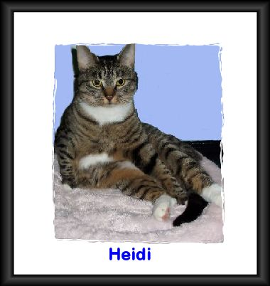 Heidi on Bed Blue