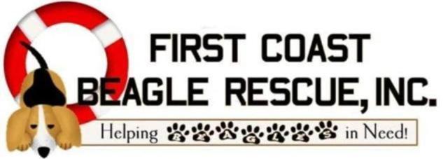 Beagle Logo 1