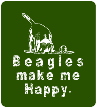 Beagles make me happy