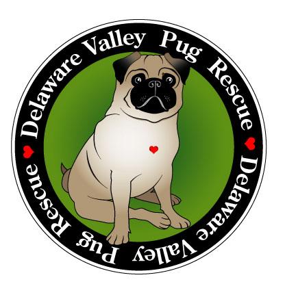 DVPR Logo