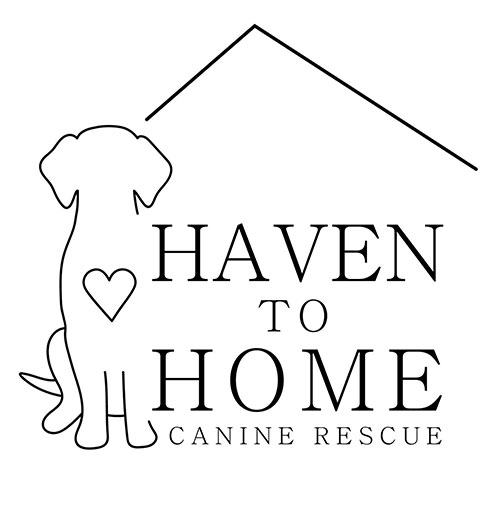 Haven to Home Canine Rescue Logo