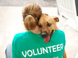 Volunteer Pic