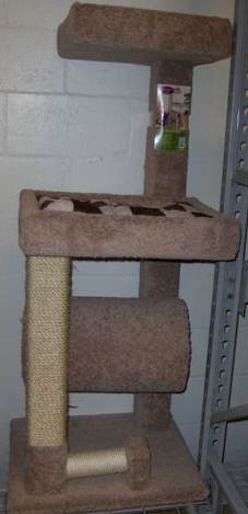 Cat Climber 3 level