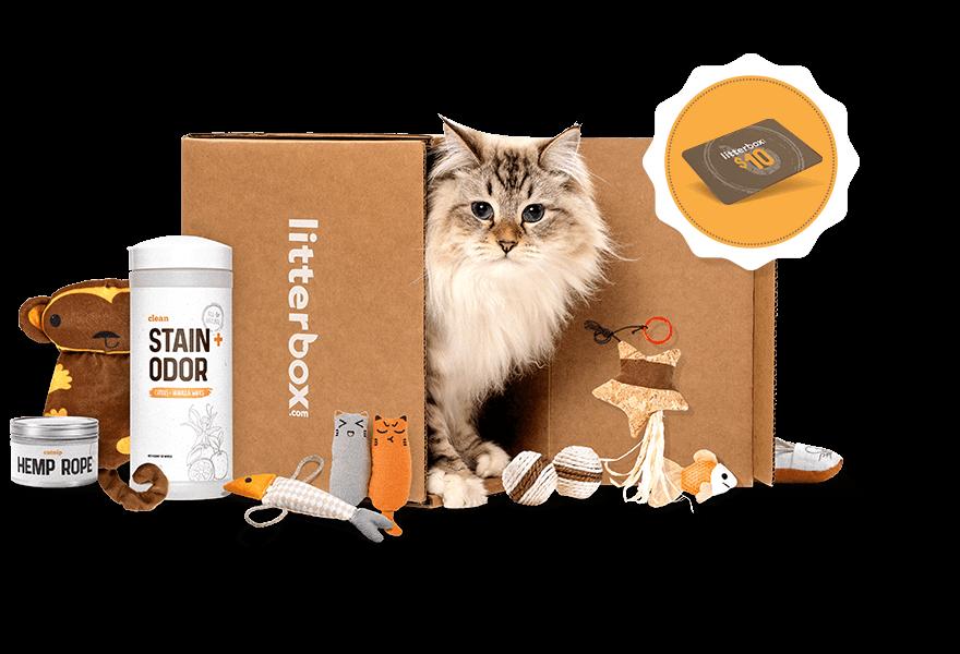 LitterBox Cat Box