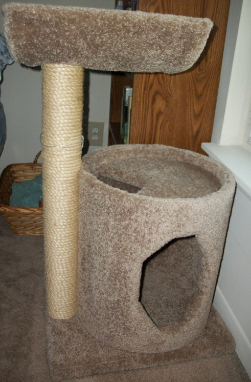 cat climber two level w/ condo area