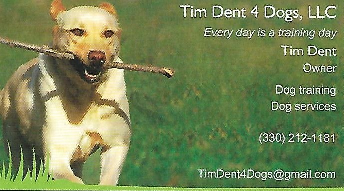 Tim Dent Business Card
