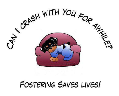 foster homes