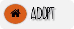 adopt icon