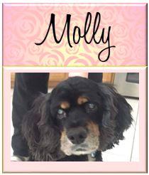 Molly23
