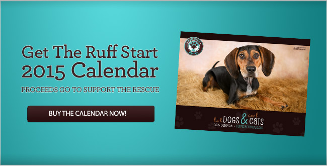 Get The Ruff Start2015 CalendarPROCEEDS GO TO SUPPORT THE RESCUE