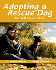 Web Image: Adopting A Rescue Dog
