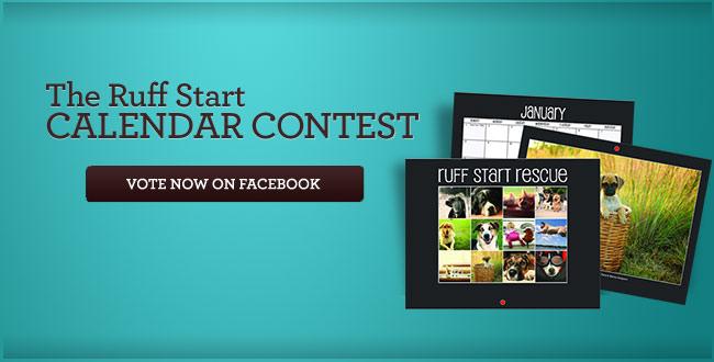 The Ruff StartCalendarContest - Vote now!