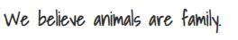 We believe animals are family