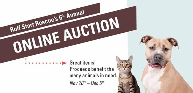 6th Annual Online Auction