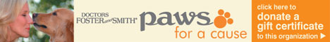 Web Image: paws for a cause
