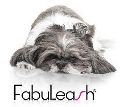 Sponsor Fabuleash