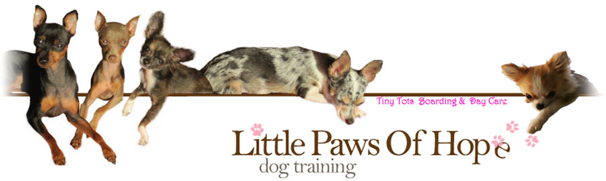 Little Paws of Hope Logo
