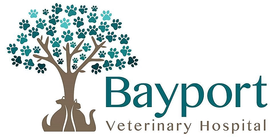 Bayport Veterinary Hospital