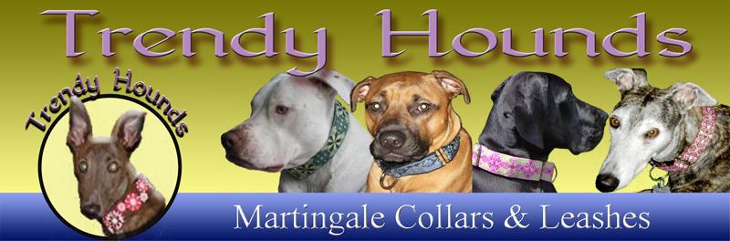 trendy hounds