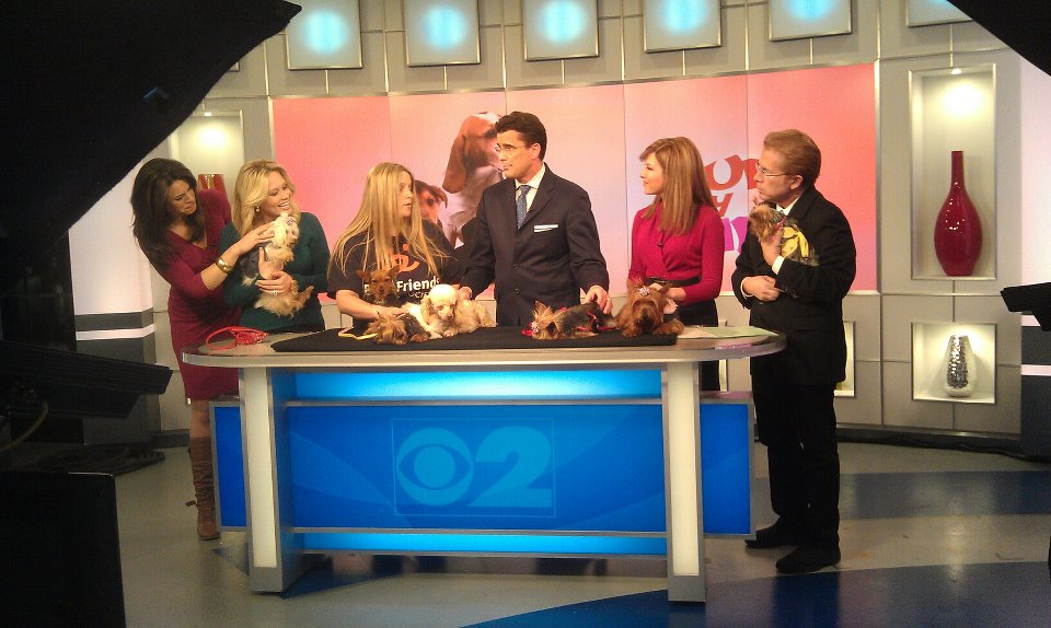 12.03.30 CBS Early Show Interviewing