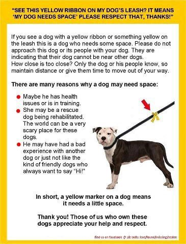Web Image: yellow-ribbon