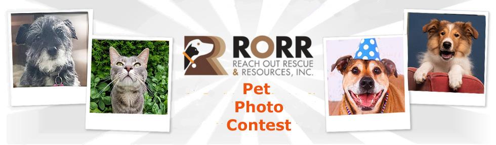 RORR Photo Contest 2020