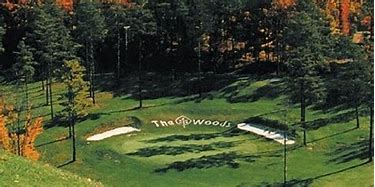 The Woods Golf Course 2