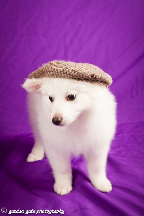 Cotton with Hat