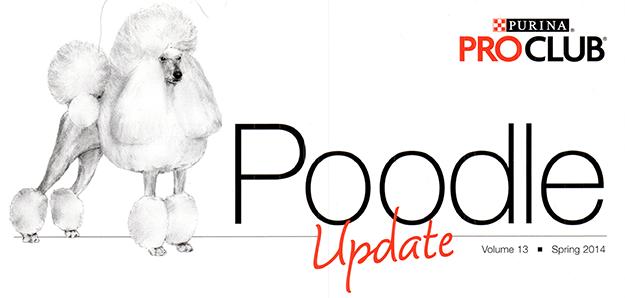 Pro Club Poodle Update