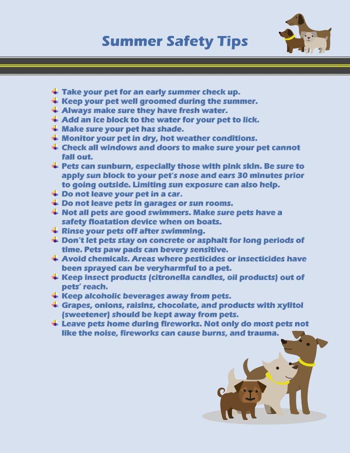 Summer Safety Tips.2020